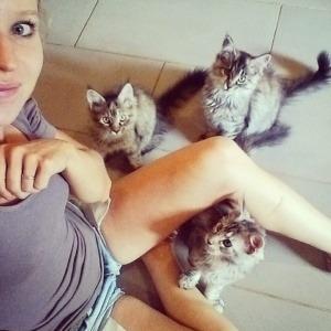 Chats en gardiennage