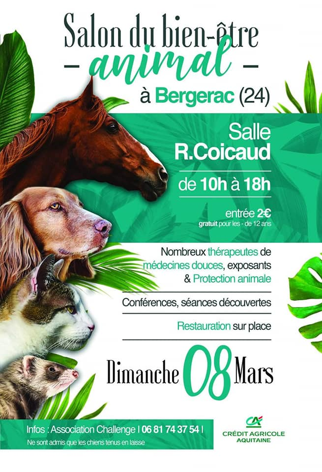 Affiche salon animalier bergerac