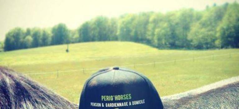 Pension et Gardiennage à domicile Perig'horses